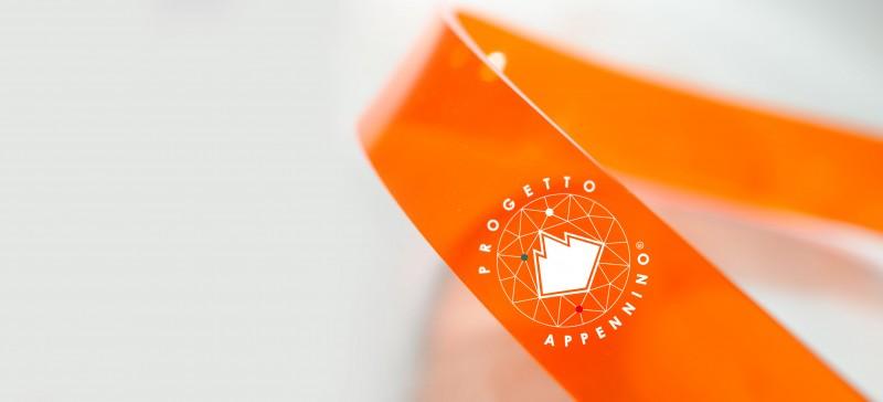 Progetto Appennino | logo